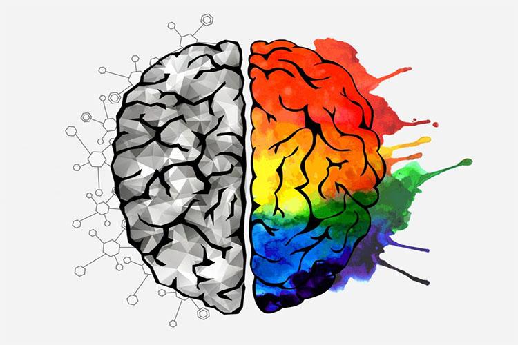۱۴ نشانه که نشان میدهد هوش هیجانی بالایی دارید