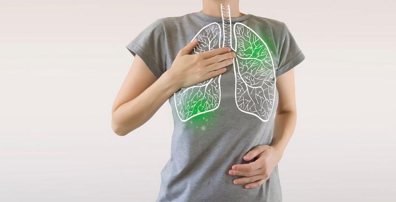 ریه - گیاهانی که ریههایتان را شست و شو میدهند